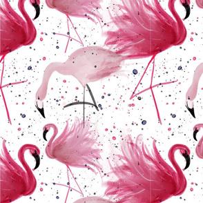 Pink Playing Flamingos