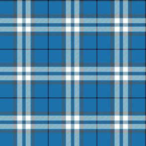"MacLintock blue tartan, 6"""