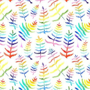 Rainbow Ferns