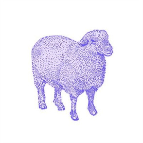Purple Nursery Sheep
