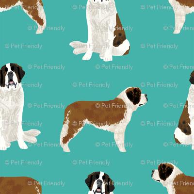 saint bernard simple dog breed pure breed fabric turquoise