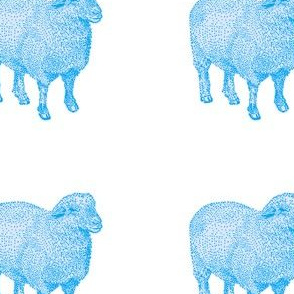 Blue Nursery Sheep