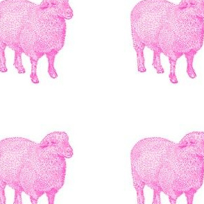 Pink Nursery Sheep