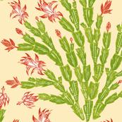 apple-red Christmas cactus damask