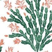 Christmas_cactus_damask2_0386fix_shop_thumb