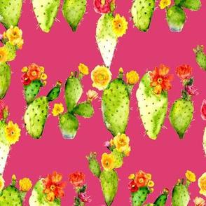 prickly pear watercolor cacti on fushia pink