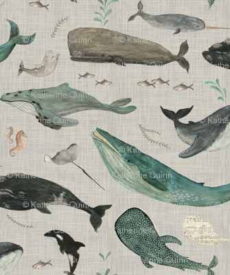 whale song gray