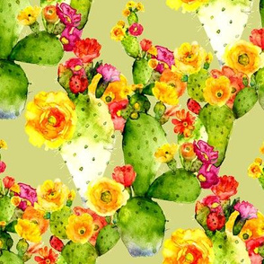 cacti watercolor blooms on green