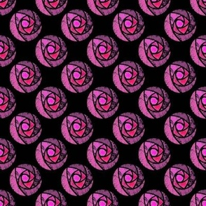 Pink roses mackintosh on a black background