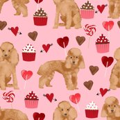 Rtoy-poodle-apricot-valentines-3_shop_thumb