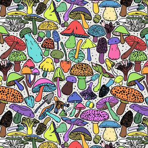 All The Mushrooms On White