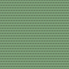 Succulent Diamond Green