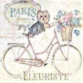 Rrrcycle-yorkie_shop_thumb