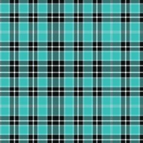 Turquoise Plaid_smaller