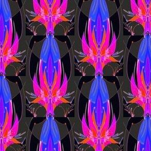 Adoration Graphite