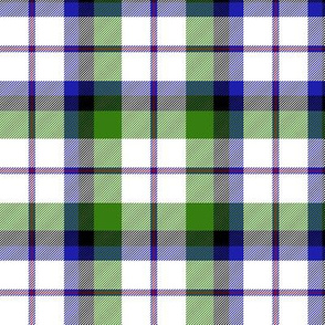 "MacNaughton dress tartan, 6"""