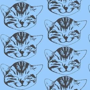 kitty light blue