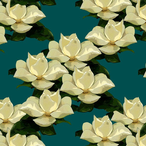 magnolia cerulean