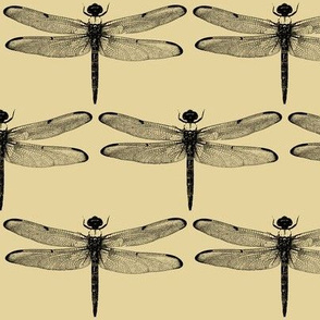 Dragonflies on Tan // Large
