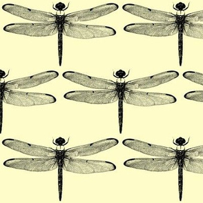 Dragonflies on Pale Yellow // Large