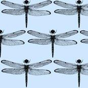 Rdragonflies-baby-blue_shop_thumb