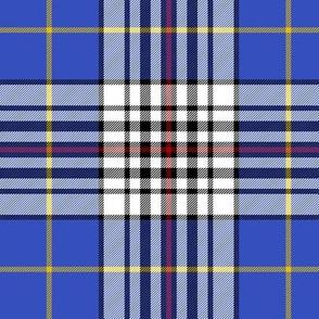 "Thomson blue tartan, 6"""