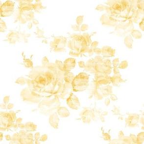 Sweet Adeline buttercup