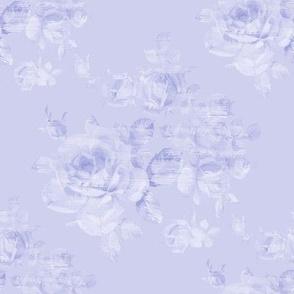 Sweet Adeline blue violet