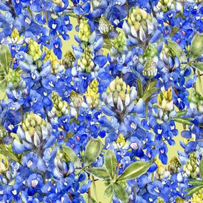 bluebonnet field watercolor on green