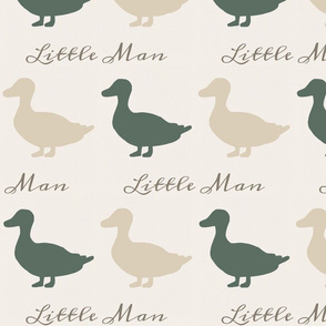 Ducks - little man - tan and green
