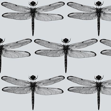 Rdragonflies-on-light-grey_shop_preview