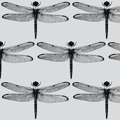 Dragonflies on Light Grey // Large fabric by thinlinetextiles on Spoonflower - custom fabric