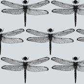 Rdragonflies-on-light-grey_shop_thumb