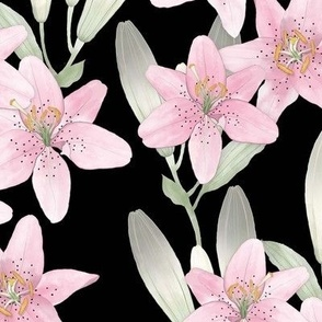 Pink Lilies on Black