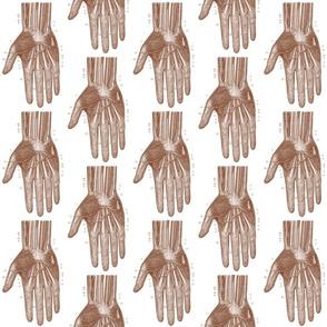 hand3-ch