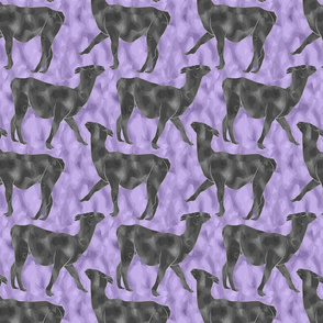Moody Mod Llamas - pewter purple small