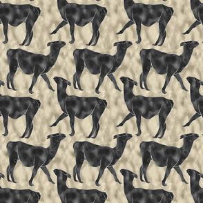 Moody Mod Llamas - charcoal sand small