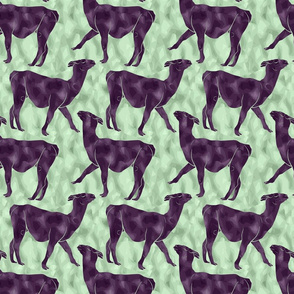 Moody Mod Llamas - plum mint small
