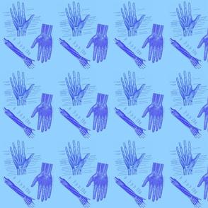 arm/hand