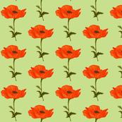 poppy-green