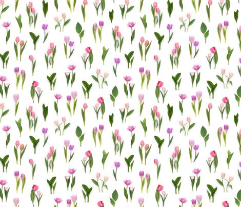 Rpink_tulips_repeating_pattern_150_dpi_shop_preview