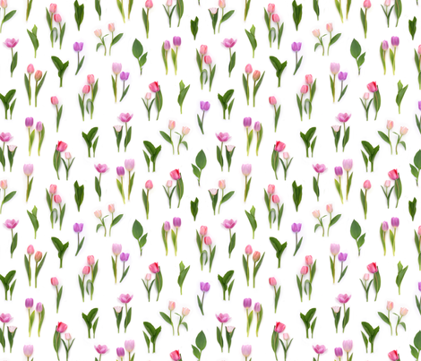 pink tulips in spring fabric by bottle_branch on Spoonflower - custom fabric