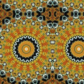 Vixen Kaleidoscope