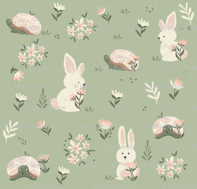 R001_hare_tortouise_preview