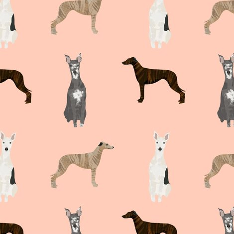 Rwhippet-simple-2_shop_preview