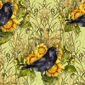 Rcrow-sunflowers-charlock_shop_thumb