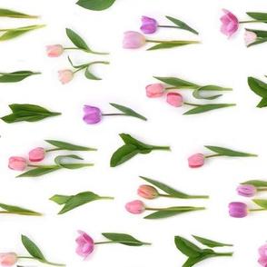 Pink and purple tulips tea towel