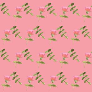 delicatedrawings (2)-ch-ch
