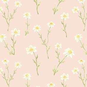 Dainty Daisy Pink