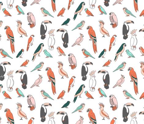 parrot // tropical rainforest bird fabric parrots white multi fabric by andrea_lauren on Spoonflower - custom fabric